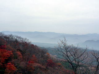 201011i51